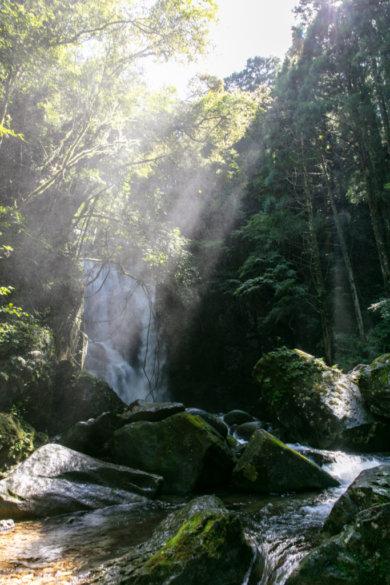 和歌山県新宮市 桑ノ木の滝