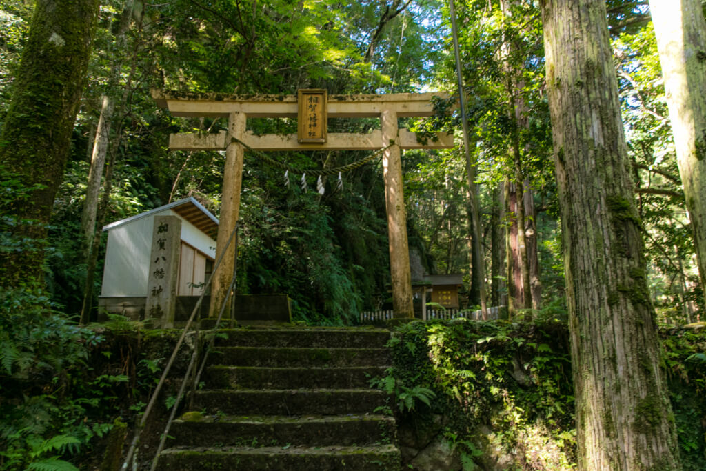 和歌山県新宮市 桑ノ木の滝 ハイキングコース 相賀神社
