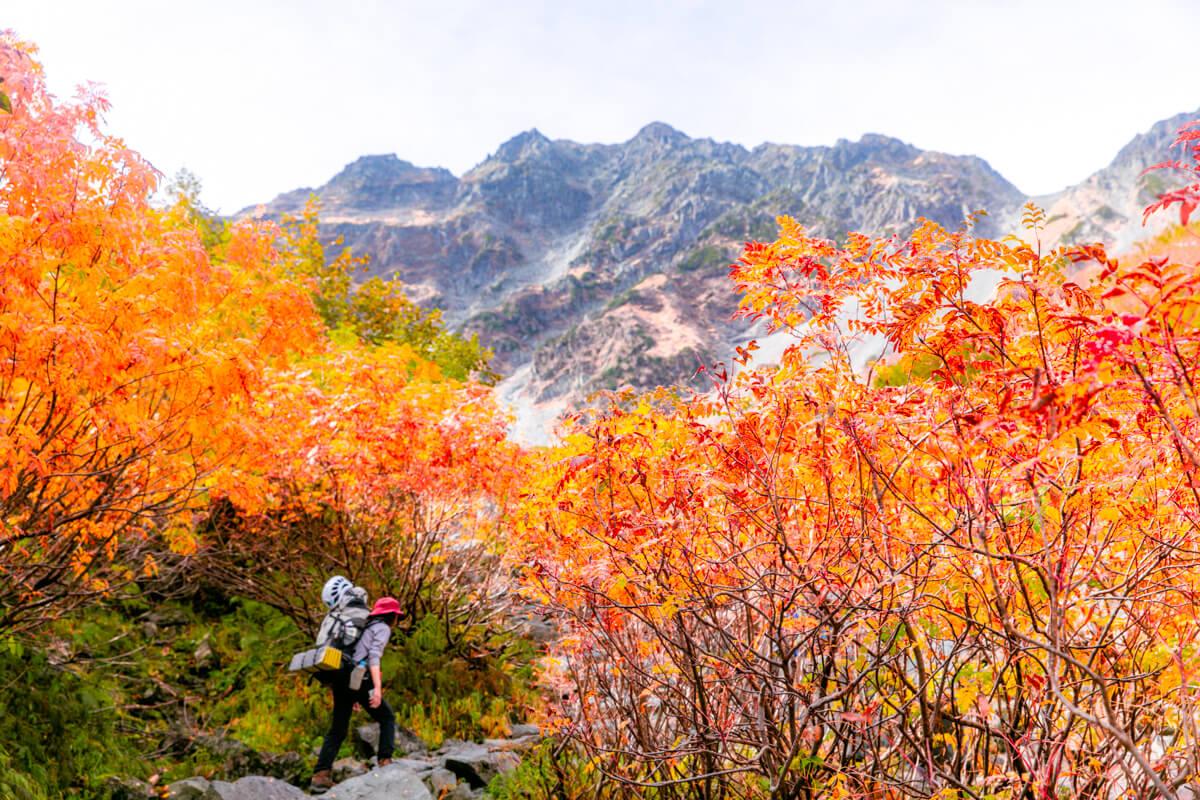 10月中〜下旬の涸沢付近の紅葉