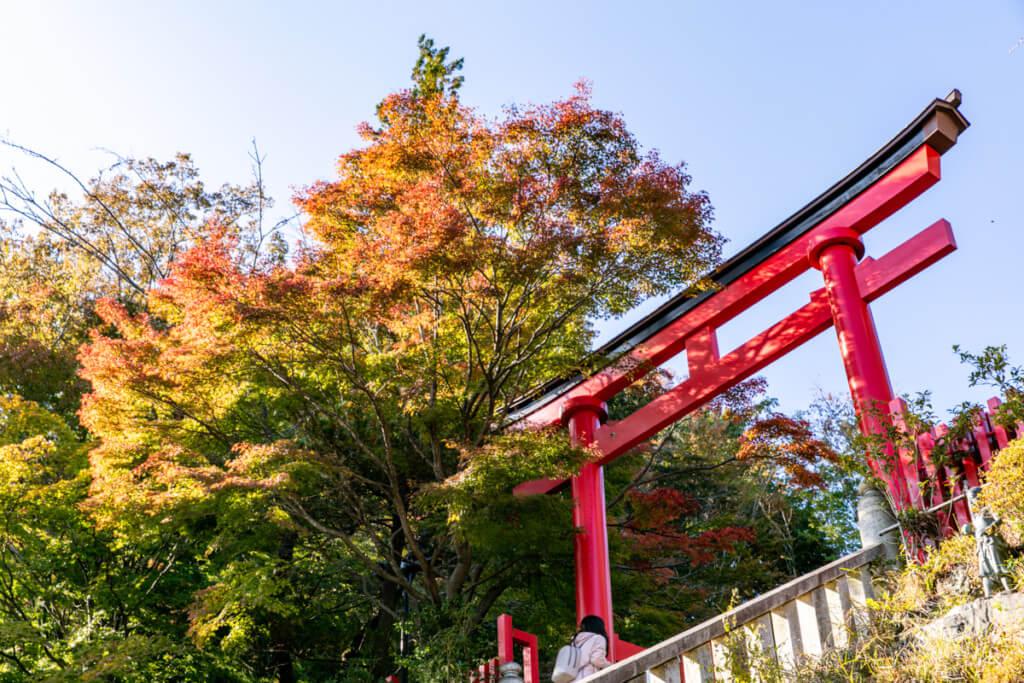高尾山 薬王院の鳥居と紅葉