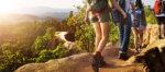緊急事態宣言が出ている時、登山はいいの?登山ガイドが説明します。