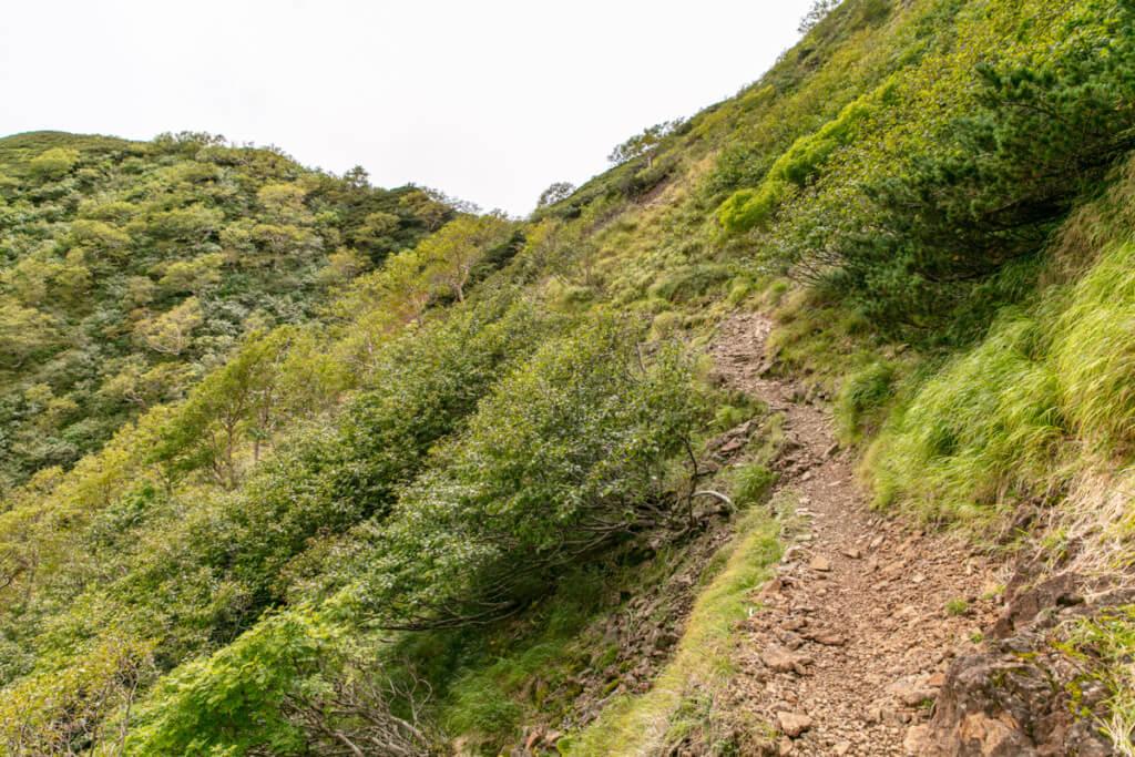 八ヶ岳 中岳のコル