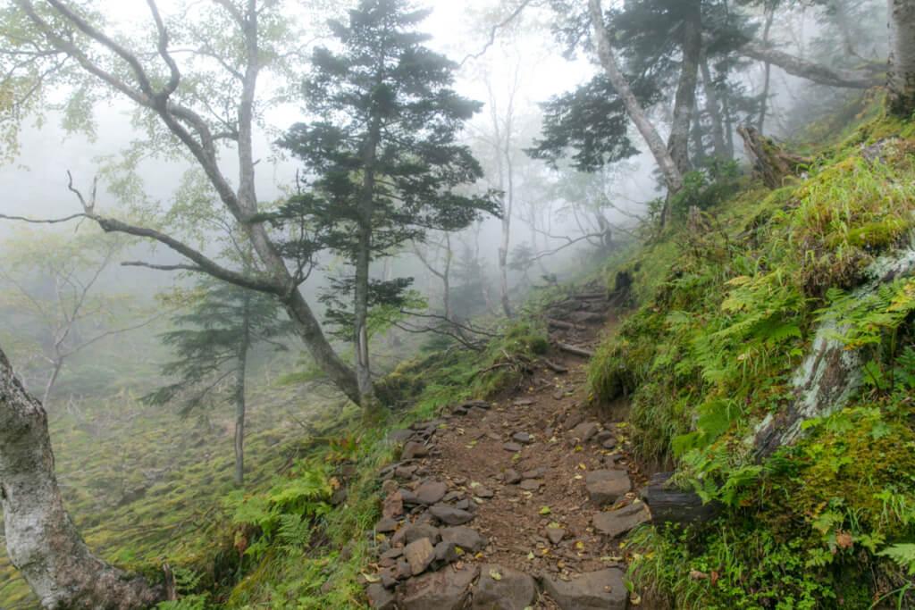 八ヶ岳 オーレン小屋〜赤岩の頭