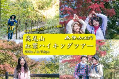 高尾山 紅葉ハイキングツアー