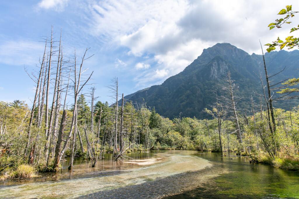 岳沢湿原からの六百山