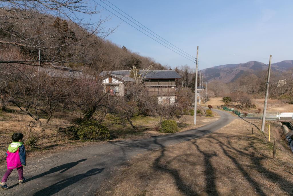 宝登山山麓の道