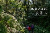 鎌倉ハイキング 衣張山