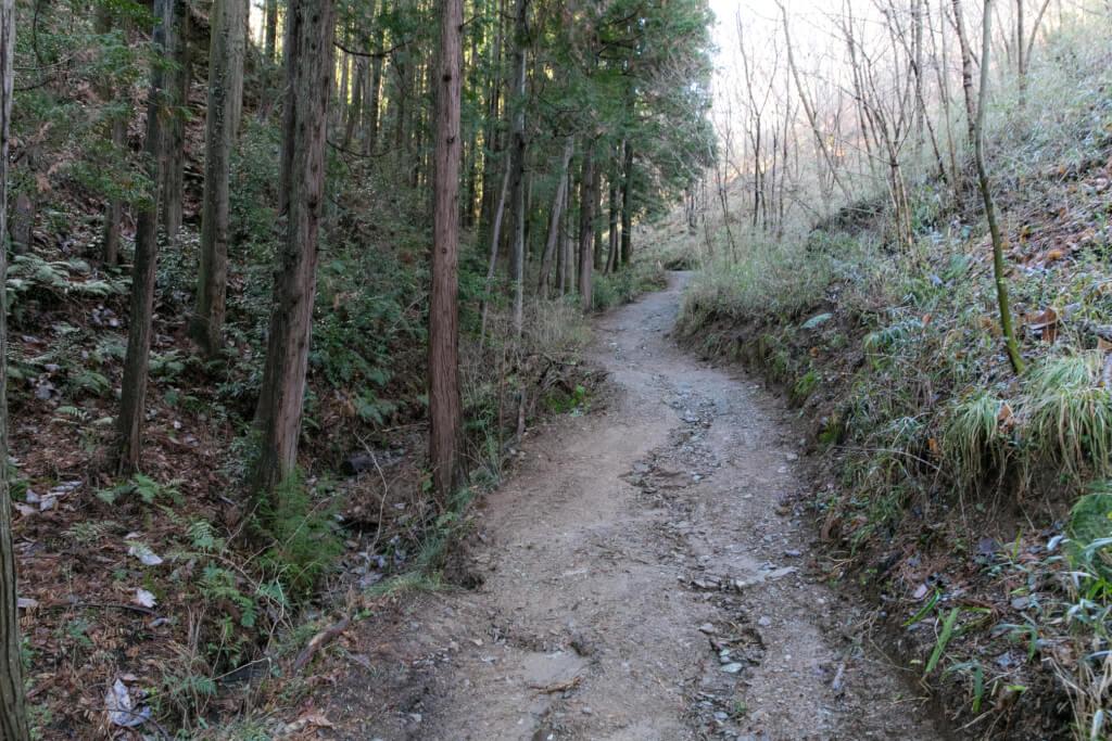 長瀞アルプス 登山道