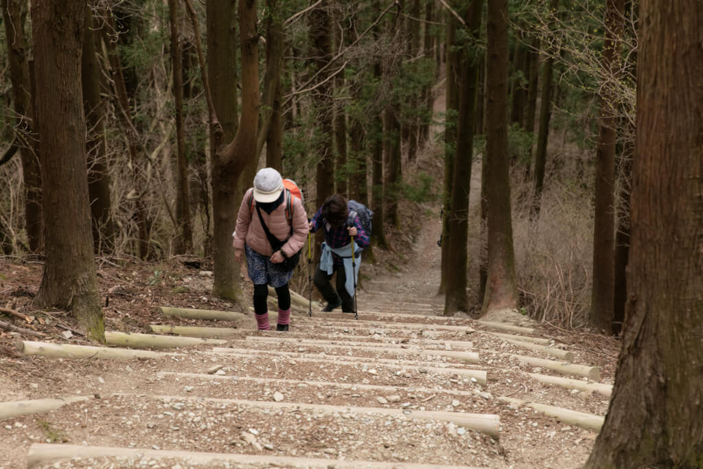 宝登山北登山道 木段