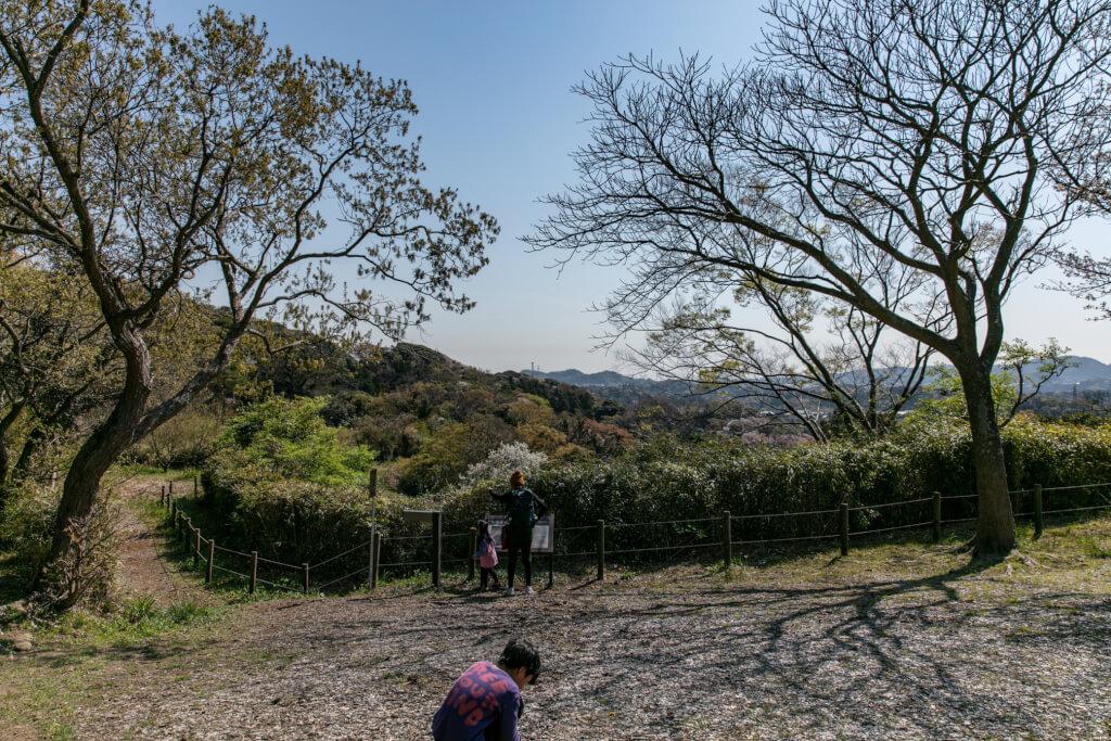 鎌倉ハイキング 衣張山 お猿畠の大切通 展望広場