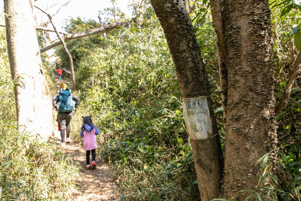 鎌倉ハイキング 衣張山 お猿畠の大切通 登山道 マムシ注意看板