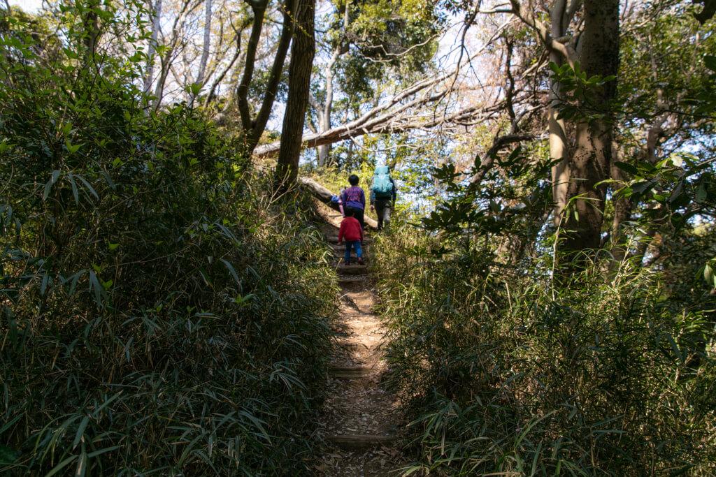 鎌倉ハイキング 衣張山 登山道