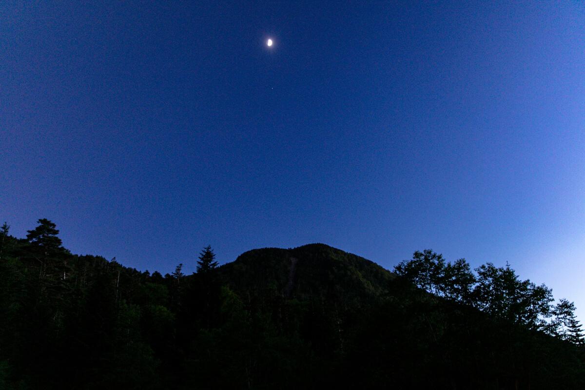 八ヶ岳 夜の峰の松目
